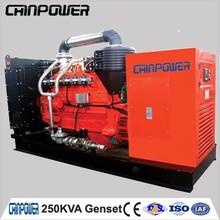 250kva natural gas generator with leroy somer alternator