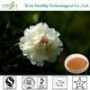 /p-detail/natural-a-base-de-hierbas-de-la-medicina-en-polvo-paeoniflorin-del-fabricante-de-china-300003191923.html