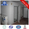 Large and small blast freezer prcice cold room for fish for sale