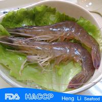 HL002 hot sale shrimp vannamei price FDA Certification