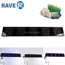 Top rated 3w chip aquarium led for coral reef and marine fish