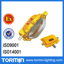 70W 100W 150W metal halide MH high pressure sodium lamp HPS light source hazardous lighting fixtures explosion proof floodlight