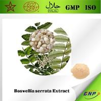 BNP Sells Pure Natural boswellia serrata extract Powder Boswellic Acid