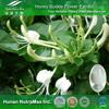 Honey Suckle Flower Extract, Natural Honey Suckle Flower Extract, Honey Suckle Flower Extract 20:1