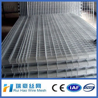Super Quality Welded Electro Galvanized wire Mesh In Stock