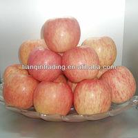 2012 new crop chinese fuji apple price