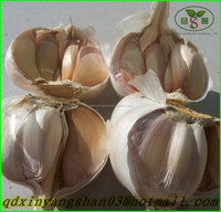 2015 Fresh Garlic/100% Natural Garlic
