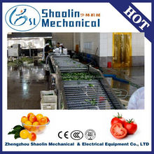 New Style fruits washer/industrial washer with best service