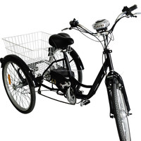 china cheap electric gas powered adult tricycle