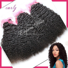 Direct Factory Wholesale Brazilian 7A Human Hair afro kinky curly