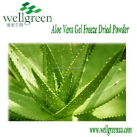 100% pure raw material aloe vera-aloe vera gel freeze dried powder
