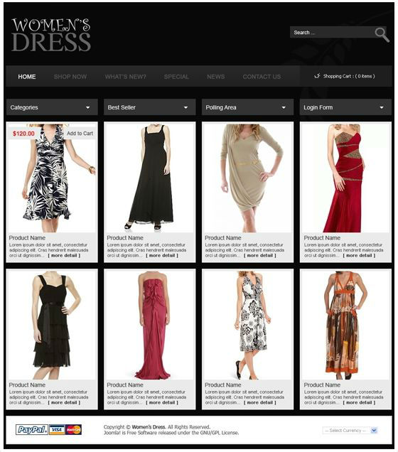 Website Designing For Women 39 S Clothing Business