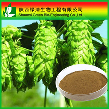 high quality Black Cohosh Extract Triterpenoid Saponins powder 2.5%