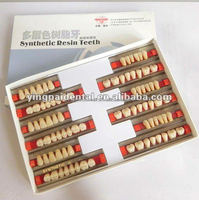 Yingpai 2or 3 layer resin denture teeth/dental equipment with CE and ISO certification