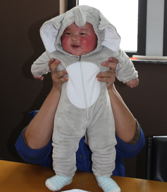 2015 babies designer wholesale price animal costumes baby