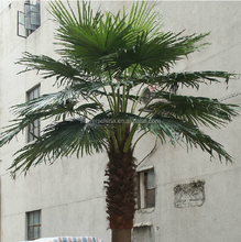 Plastic decorative artificial wooden tree,outdoor artificial palm trees