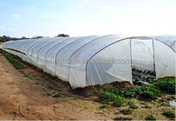 PE agricultural film for vegetables.jpg