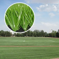Fifa Approved Turf Artificial Grass