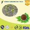 Pharmaceutical Grade CAS 138-52-3 25%/98% white willow bark extract salicin Easing Fever and Flu Symptoms