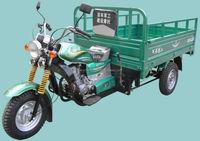 China adult motorized 3 wheel motorcycle/cargo tricycle