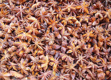 selling dry star anise