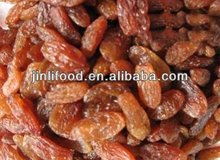dried fruit selling best high quality delicious red raisin sultana