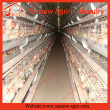 Top Selling poultry cage equipments for small farm