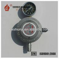 20mm Silvery White Color LPG Gas Regulator, LPG Gas Regulator With Meter, Low Pressure LPG Gas Cook Regulator With Gauge