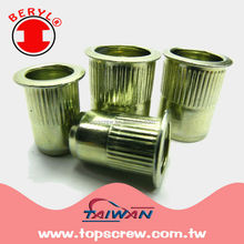 POP RIVET NUT - (TSBS SERIES / LARGE FLANGE SPLINED RIVET NUT)