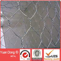 Electric / hot-dipped galvanized chicken coop hexagonal wire mesh