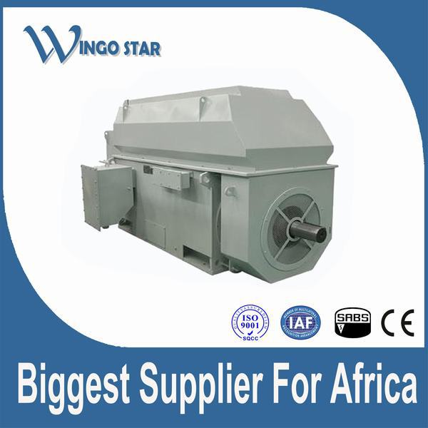 high voltage electrical traction motor