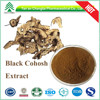 High quality 2.5% Triterpene glycosides Cimicifuga racemosa extract