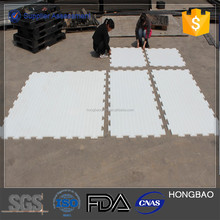 competitive price HDPE ice rink barrier systems indoor and outdoor rinks, leisure rinks in China