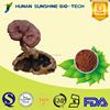 100% Natural Herbal Powder Reishi Mushroom Extract Triterpenes