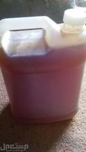 sidr honey Hadramout Yemen