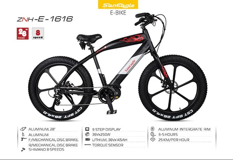 znh-e-bike-1616_01