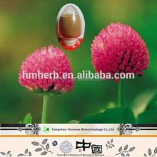 natural herbal extract powder red clover extract 20%Isofalvones