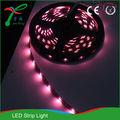 pcstl20505060rgb precio de fábrica de nuevos productos al por mayor de china flexible tira de luz led