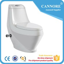 Sanitaryware One Piece Toilet with Bidet Fuction for Turkey