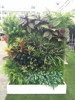 Artificial hedge boxwood mat grass patio hedge for backyard landscaping
