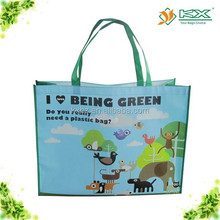 Guangzhou environmental shopping bag / PP non woven bag
