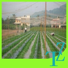 agricultural used wrap knitted anti-bird net