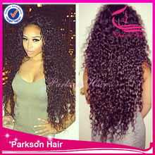 Hot sale long hair with baby hair free style great quality high density 8-26inch malaysian curly full lace wig