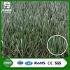 wuxi zhangjiagang turf cesped sintico artificial grass 50mm for football futsal
