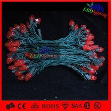 10m 10 apples Christmas string led light/led outdoor string lights