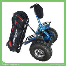 Estway one New Products best golf car alignment electric two-wheeled vehicle with 2000w power