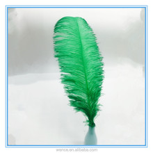 Wholesale Green Red Ostrich Feather 60-65cm