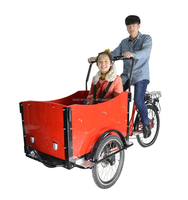 Adult electric pedal cargo bajaj tricycle