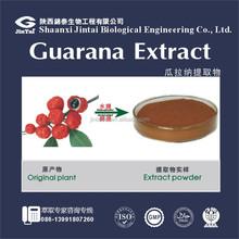 paullinia cupana extract 10% 20% guarana seed extract powder