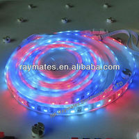 2 years warranty color changing led chasing strip